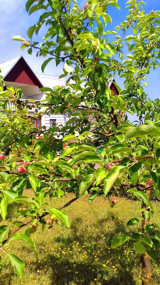 Biebrzański Park Narodowy noclegi z ogrodem