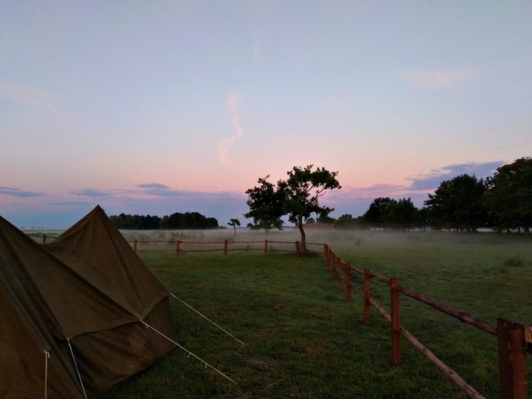 Biebrzańskie pole namiotowe Biały Grąd