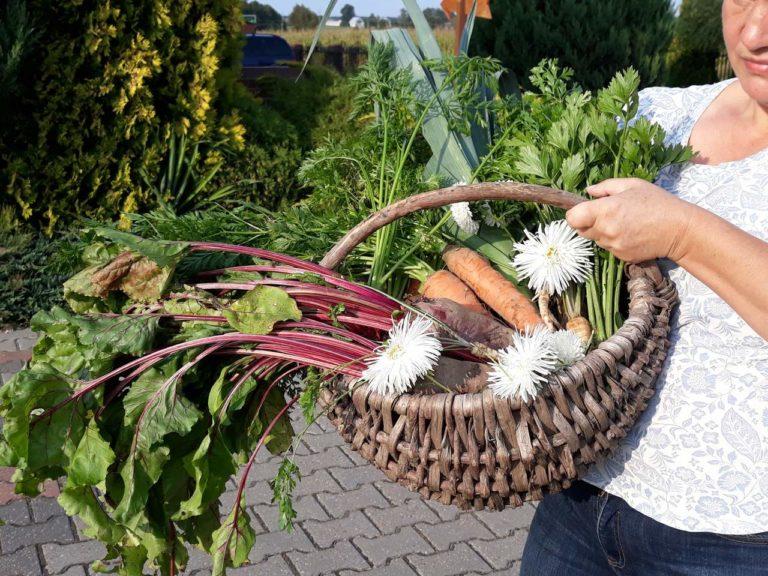 Agroturystyka Podlasie z wyżywieniem
