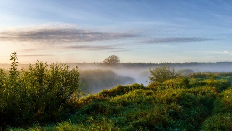 Biebrzański Park Narodowy najważniejsze informacje
